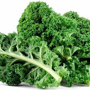 wordpress-kale