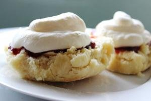 NuWave Oven Pro Plus - Recipes: NuWave Scones